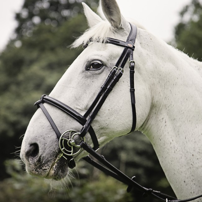 BR051 Raised Flash Bridle