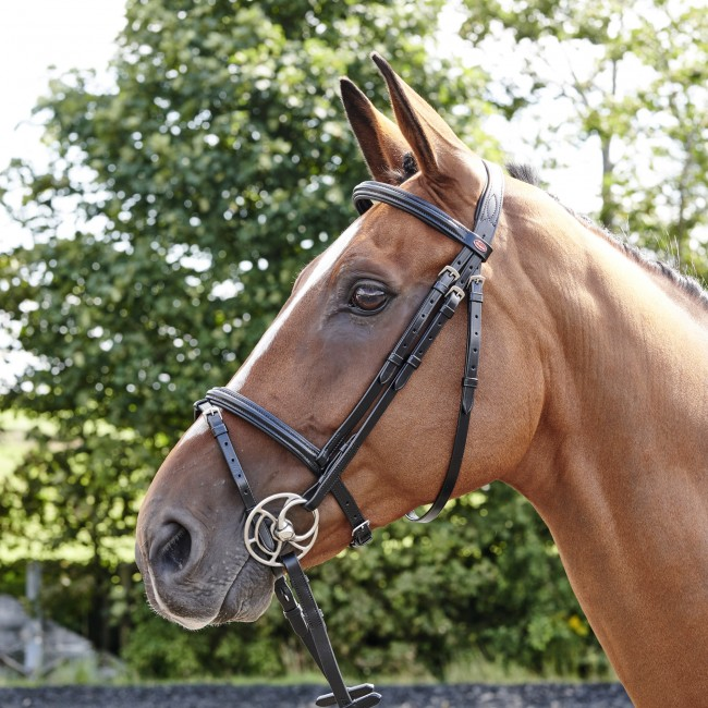 BR077 - Barton Raised Flash Bridle (inc Rubber Reins)
