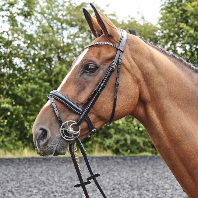 BR078 - Barton Bling Flash Bridle (inc Rubber Reins)