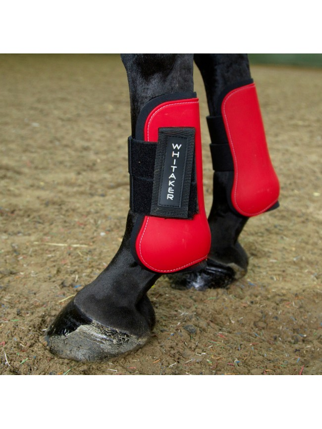 LP025 Skipton Tendon and Fetlock Set of 4