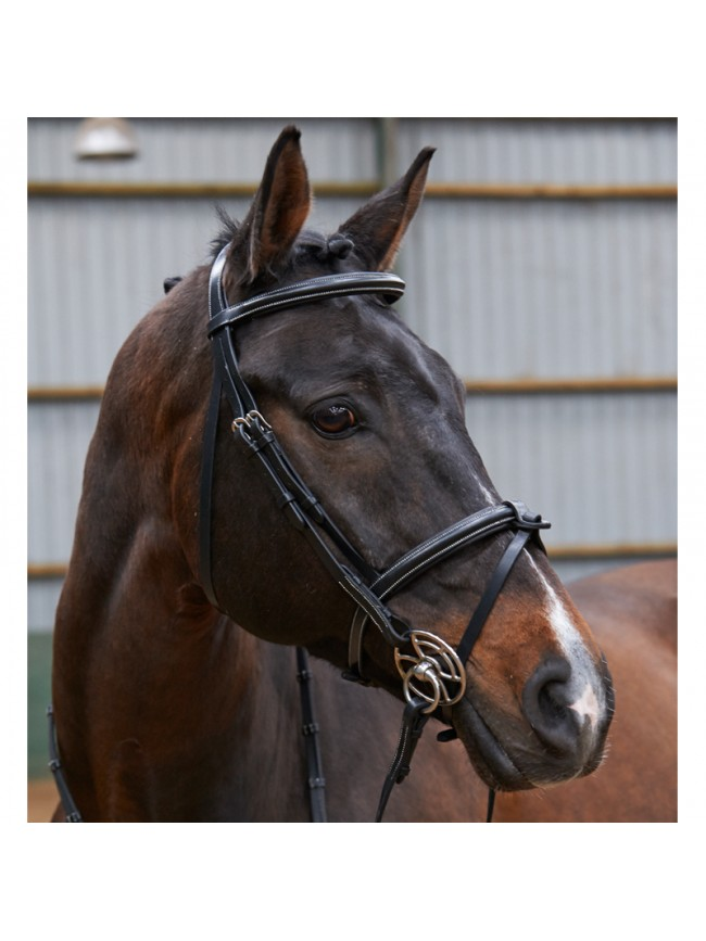 BR051A - Eastwood Raised Flash Bridle With Reins
