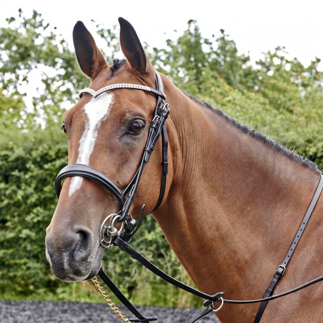 BR072 - Lynton Snaffle Bridle with 2 browbands