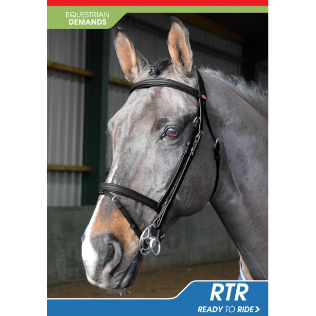 BR054 -  Ready to Ride Leather Flash Bridle