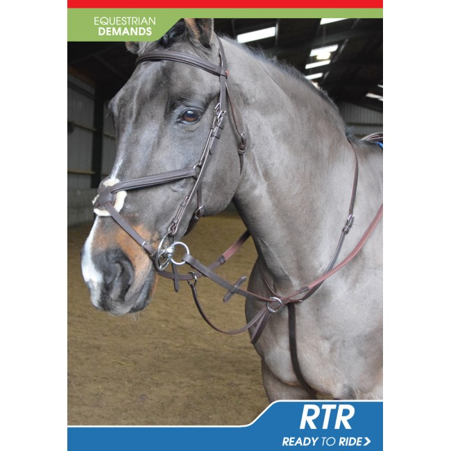 MA054 Ready to Ride Martingale