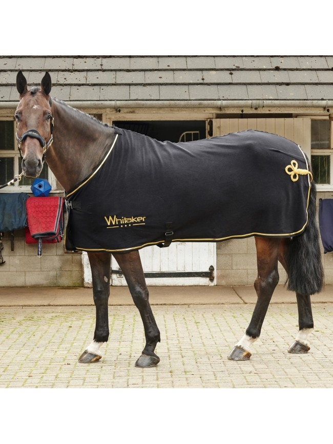Thornton Show Rug with FREE Headcollar