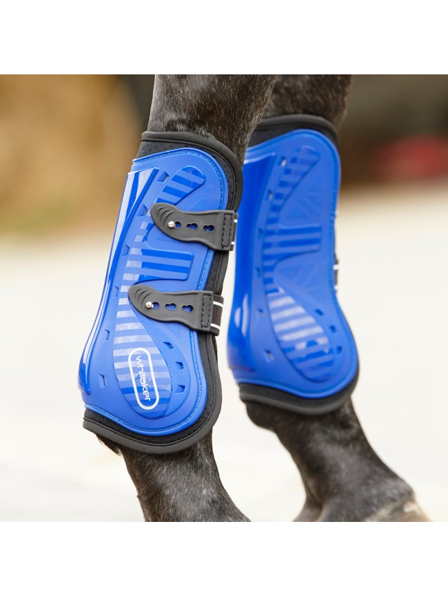 LP083 Bingley Tendon & Fetlock Set of 4