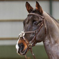 BR052 -  Valencia Super Deluxe Mexican Bridle with Reins