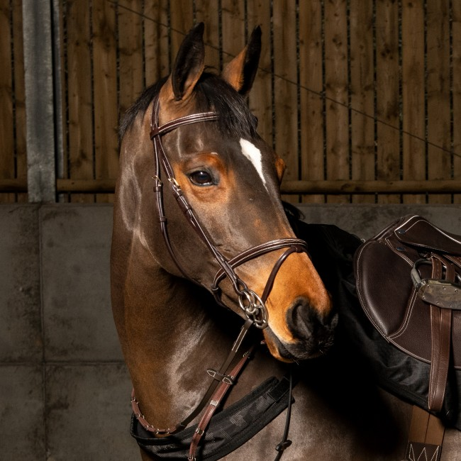 BR053  - Valencia Super Deluxe Flash Bridle with Reins