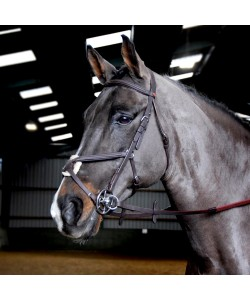 BR055 - Ready to Ride Mexican Bridle
