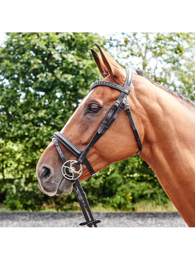 BR073 - Lynton Flash Bridle with 2 browbands