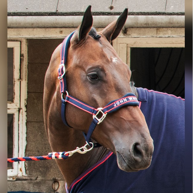 WHCS - Airflow Head Collar with Leadrope Set