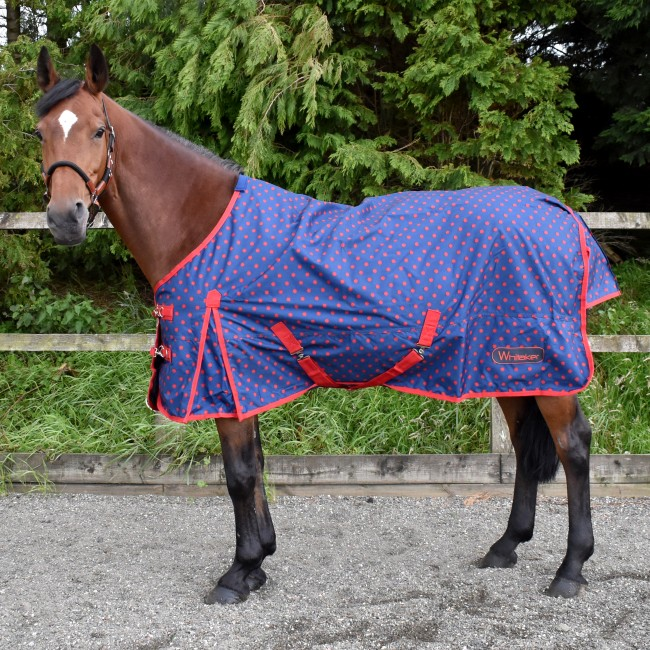 Navy and Red Dotty 0g Turnout Rug