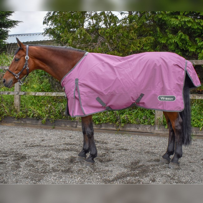 Bubble Gum 0g Turnout Rug