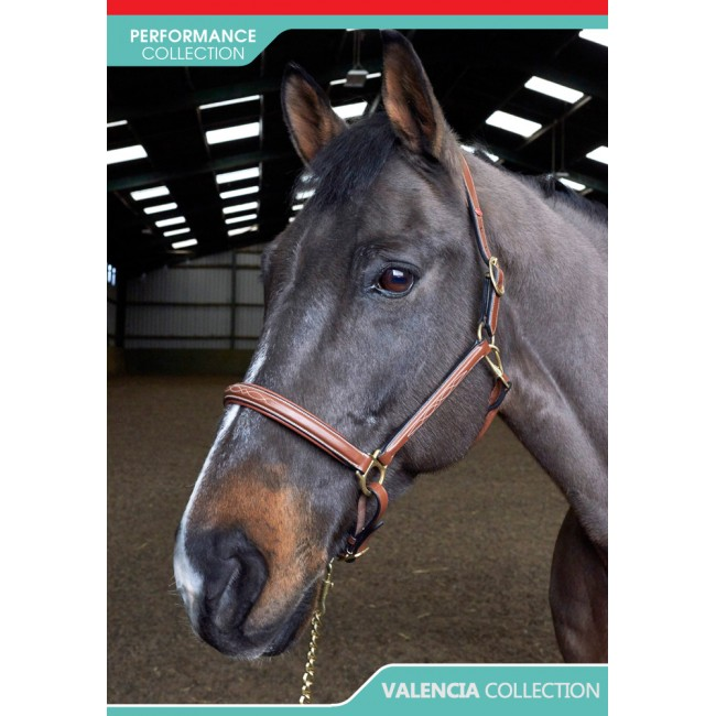 HC052 - Valencia Fancy Stitched Head Collar