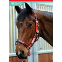 HC198- John Whitaker Padded Head Collar