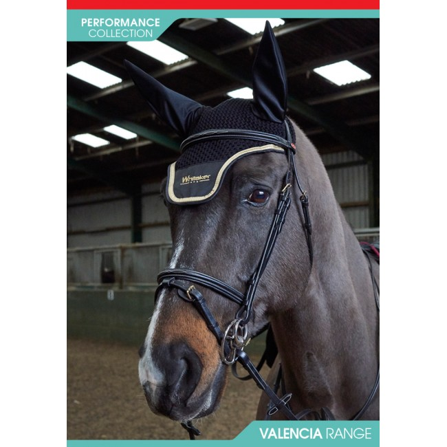 BR053  - Valencia Super Deluxe Flash Bridle