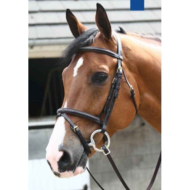 BR053  - JW Valencia Super Deluxe Flash Bridle