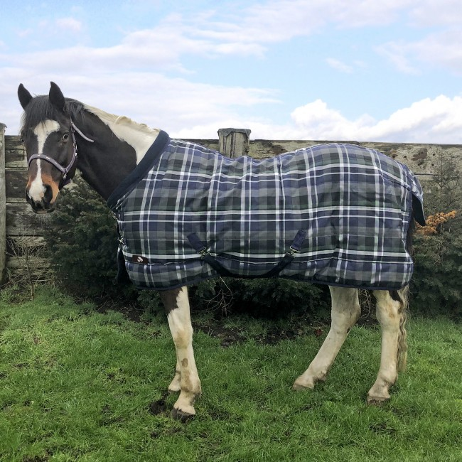 RW21 Whitaker Checked 200g Stable Rug