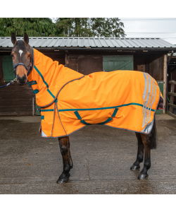 R219  Seacroft  High Viz Combo 200g Turnout Rug
