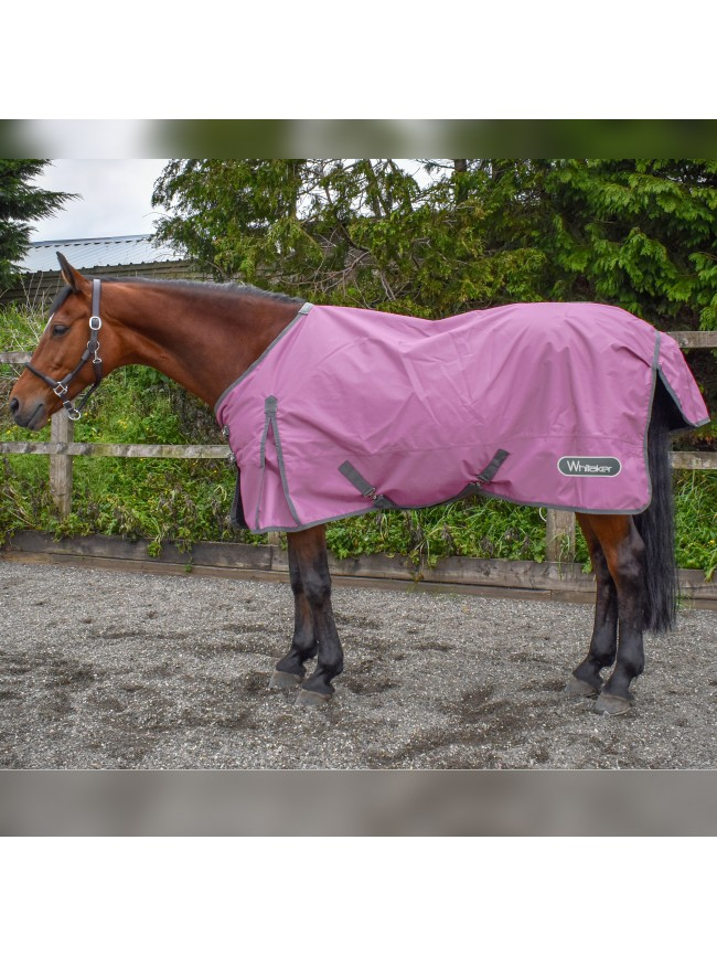 Bubble Gum 0g Turnout Rug - Limited Stock