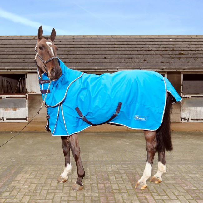 R066 Ardsey 200g Combo Rug in Bright Blue