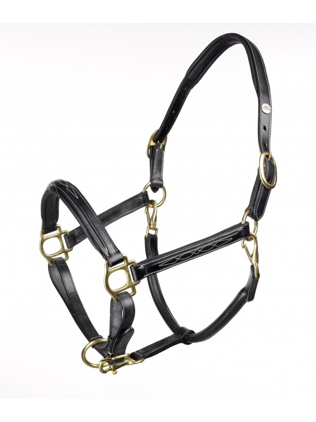 HC052 - Valencia Fancy Stitched Headcollar