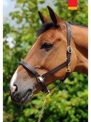 IHC- Whitaker Elland Head Collar