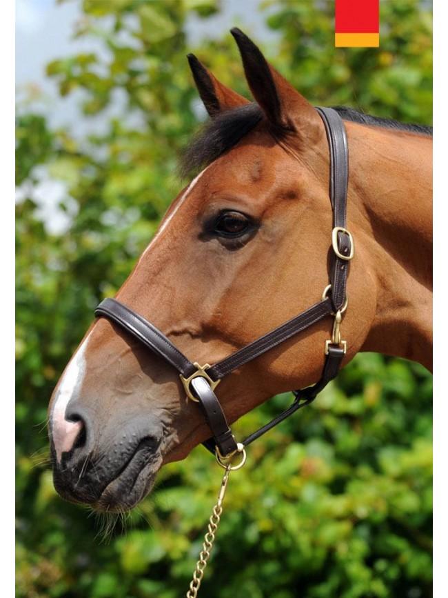 IHC- Whitaker Elland Head Collar
