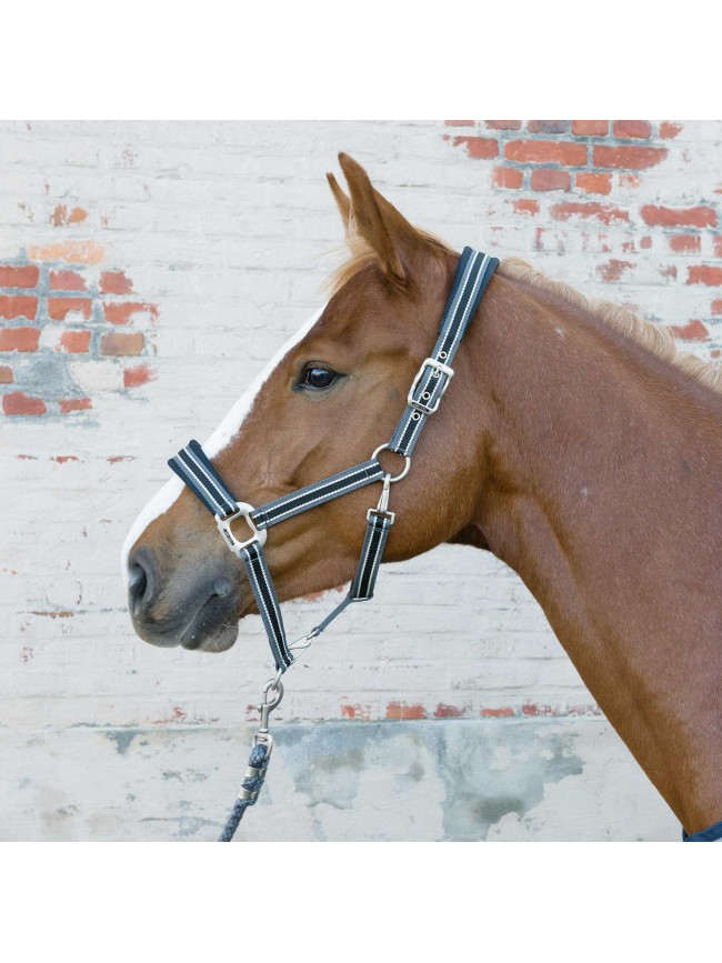 Lami-Cell Elegance Wool Headcollar
