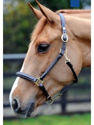 HC052 - Fancy Stitched Head Collar