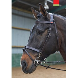 BR049 - Eastwood Training Bridle
