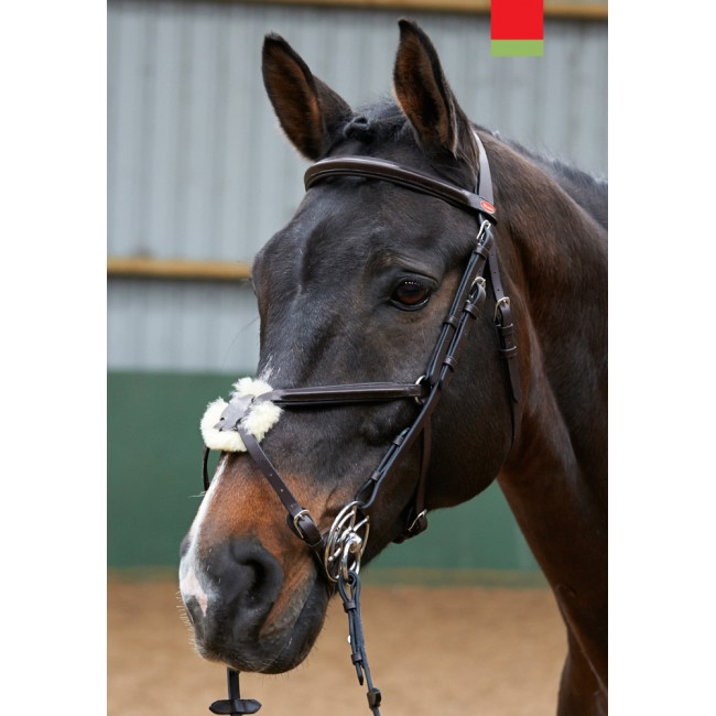 BR050 - Eastwood Mexican Noseband