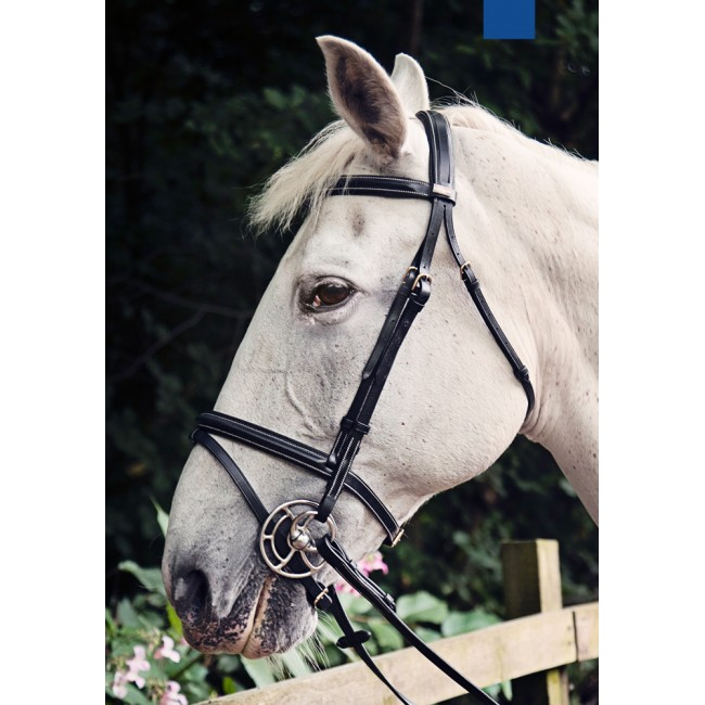 BR043 - Valencia Anatomic Flash Bridle