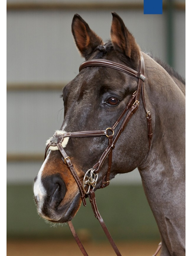 BR044 - Valencia Anatomic Mexican Bridle