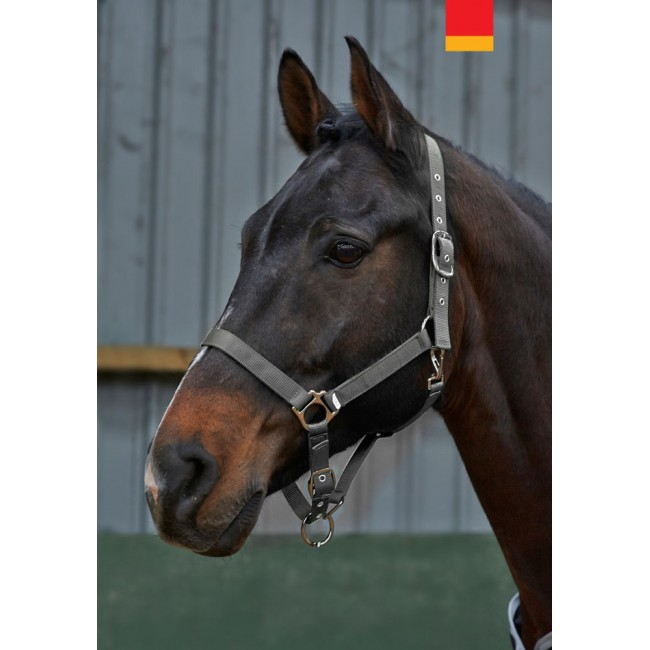 HC037 - Alex Everyday Headcollar