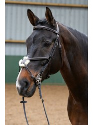 BR022- JW Mexican Bridle