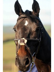 BR027 - Luxury Mexican Bridle