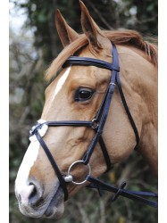 JW21-John Whitaker Mexican Bridle